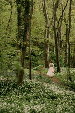 Rebecca Stice WOMAN WITH BASKET WALKING IN SPRING FOREST