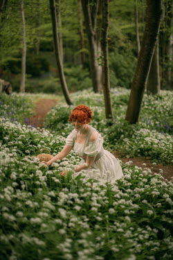 Rebecca Stice WOMAN WITH RED HAIR SITTING PICKING WHITE FLOWERS