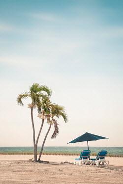 Evelina Kremsdorf PALM TREES CHAIRS AND UMBRELLA ON BEACH