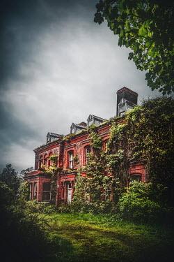 Evelina Kremsdorf EXTERIOR OF OVERGROWN RED BRICK HOUSE