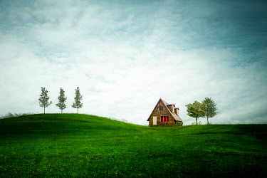 Evelina Kremsdorf WOODEN HOUSE IN FIELD WITH TREES