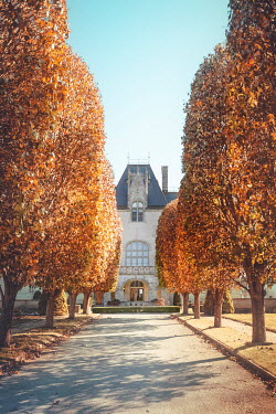 Evelina Kremsdorf MANSION WITH AVENUE OF TREES IN AUTUMN