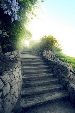 ILINA SIMEONOVA WOODEN STEPS WITH STONE WALLS AND BUSHES