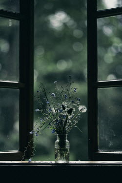 Magdalena Russocka vase with bouquet of wildflowers on window sill of old cottage