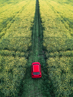 Magdalena Russocka red car on dirt road in wildflower fields from above
