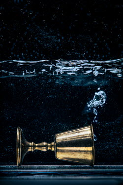 Magdalena Russocka gloden cup lying underwater