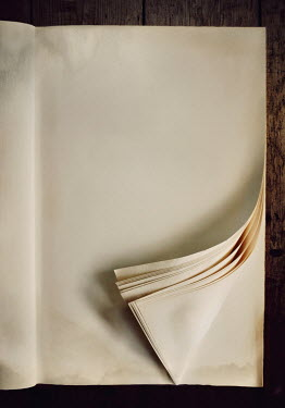 Lyn Randle CURLED BLANK PAGES IN DAMAGED BOOK