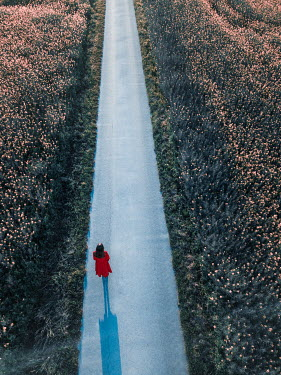 Magdalena Russocka woman in red dress standing on country road from above