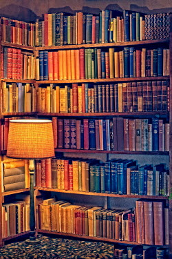 Paul Knight SHELVES WITH BOOKS AND GLOWING LAMP