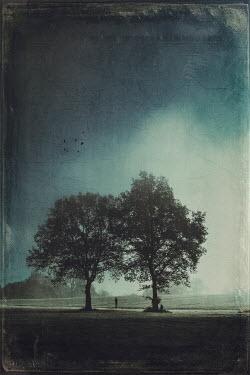 Dirk Wustenhagen DISTANT MAN STANDING BY TREES IN COUNTRYSIDE