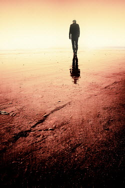 Tim Robinson SILHOUETTED MAN WALKING ON SANDY BEACH