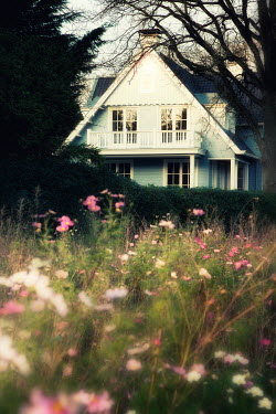 Yolande de Kort BLUE WEATHERBOARD HOUSE WITH PINK FLOWERS
