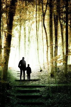Yolande de Kort MAN AND BOY HOLDING HANDS IN FOREST