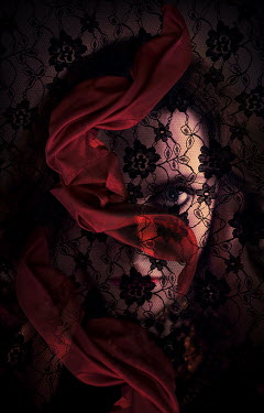 Laurence Winram WOMAN BEHIND LACE VEIL AND RIBBON