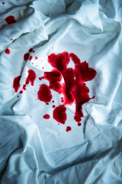 Natasza Fiedotjew Bloodstained white cotton cloth