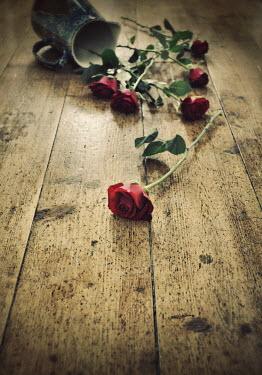 Lyn Randle FALLEN JUG OF RED ROSES ON FLOOR