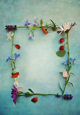 Lyn Randle BORDER OF FLOWERS WITH STRAWBERRIES