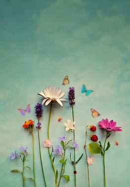 Lyn Randle SUMMERY FLOWERS WITH BUTTERFLY AND BLUE SKY