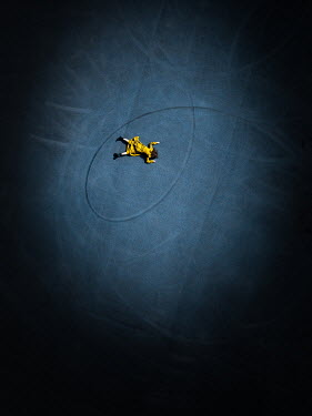 Magdalena Russocka woman in yellow dress lying down on tarmac from above