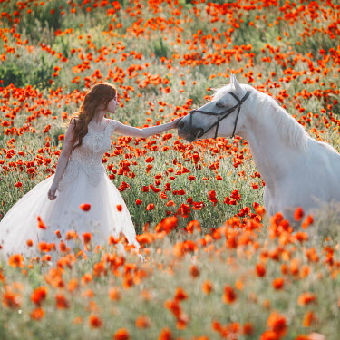 Jovana Rikalo WOMAN WITH WHITE HORSE IN POPPY FIELD
