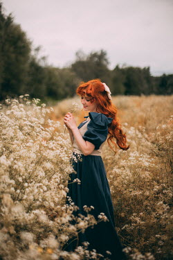 Rebecca Stice GIRL WITH RED HAIR IN WHITE MEADOW