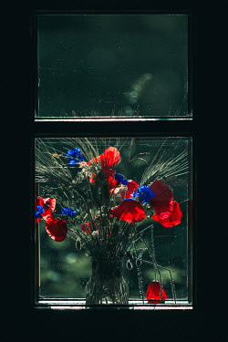 Magdalena Russocka bouquet of wildflowers in window of old cottage
