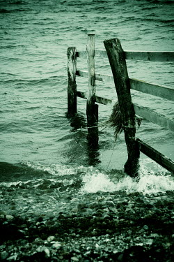 Carmen Spitznagel WOODEN FENCE IN SEA WITH PEBBLE BEACH