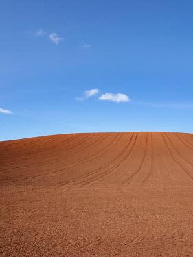 David Baker FIELD OF BROWN SOIL WITH BLUE SKY