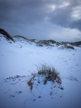 David Baker SAND DUNES IN SNOW AT DUSK