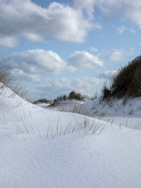 David Baker SAND DUNES IN SNOW WITH CLOUDS IN SKY