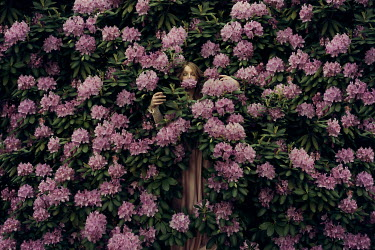 Heather Evans Smith WOMAN STANDING IN BUSH OF PINK FLOWERS