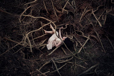 Heather Evans Smith WOMAN LYING TRAPPED IN TREE ROOTS