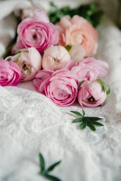 Isabelle Lafrance PINK AND WHITE PEONIES LYING ON LACE CLOTH