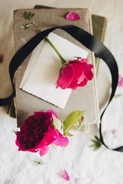Isabelle Lafrance PINK FLOWERS WITH BOOKS AND RIBBON