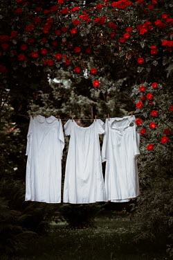 Magdalena Russocka vintage nightgowns drying on clothes line in garden