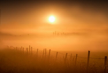 Adrian Leslie Campfield MISTY FIELD WITH FENCE AT SUNSET