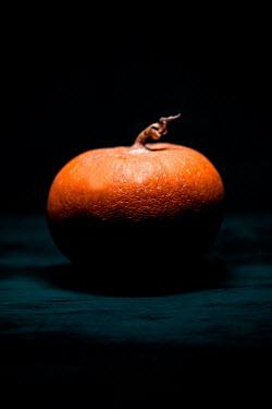 Joanna Jankowska WRINKLED ORANGE FRUIT IN SHADOW