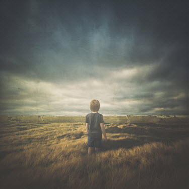 Michael Vincent Manalo LITTLE BOY IN LANDSCAPE WITH STONE WALL