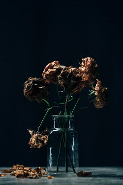 Magdalena Russocka bouquet of dried roses with fallen petals