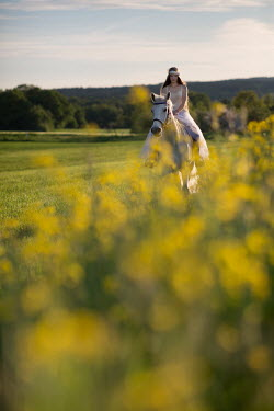 Carmen Spitznagel WOMAN IN WHITE ON HORSE IN SUMMERY COUNTRYSIDE