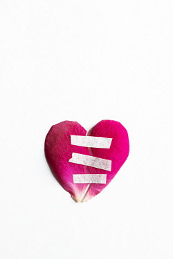 Isabelle Lafrance HEART-SHAPED PINK PETALS WITH TAPE