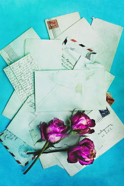 Stephanie Frey WILTED FLOWERS WITH PILE OF LETTERS