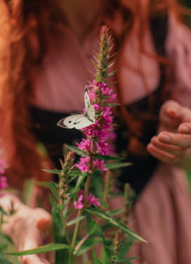 Rebecca Stice MEDIEVAL WOMAN BY PINK FLOWER WITH BUTTERFLY