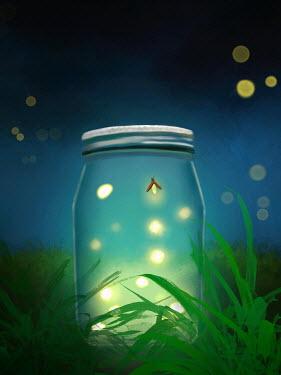 Susan Fox GLOW WORMS IN JAR ON GRASS AT NIGHT
