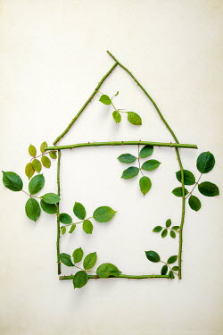 Miguel Sobreira THORNY STEMS AND LEAVES IN SHAPE OF HOUSE