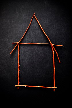 Miguel Sobreira THORNY TWIGS IN SHAPE OF HOUSE