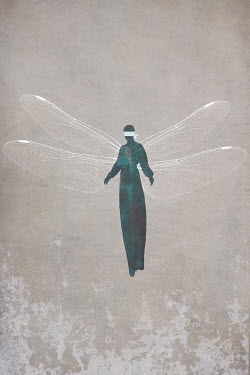 Mark Owen BLINDFOLDED WOMAN WITH DRAGONFLY WINGS