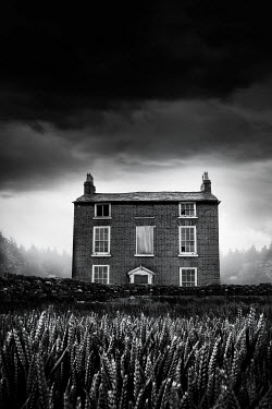 Stephen Mulcahey OLD DERELICT HOUSE WITH WHEAT FIELD