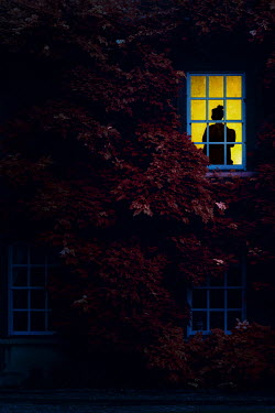 Nic Skerten SILHOUETTED WOMAN IN WINDOW OF HOUSE AT NIGHT