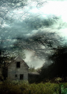 Victor Habbick DERELICT HOUSE IN MISTY COUNTRYSIDE